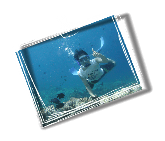 boy snorkeling in eilat reef